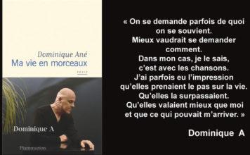 Dominique A Livre récit