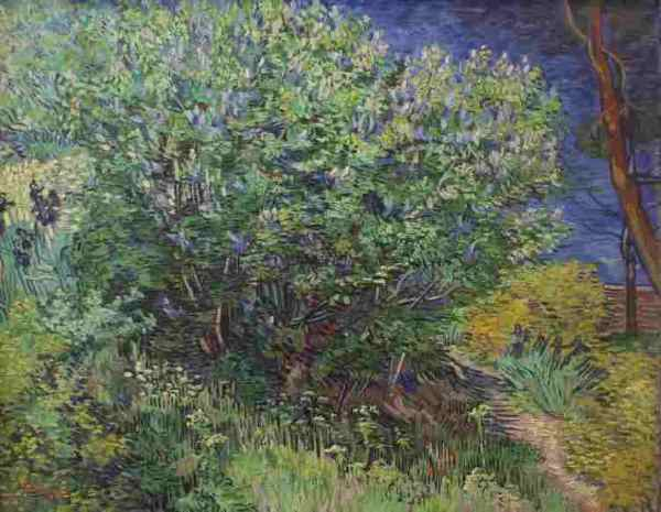 Van Gogh au musée de l'Ermitage