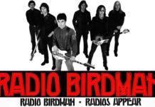 radio birdman radios appear