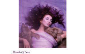 Kate Bush - Hounds of Love ( pochette)