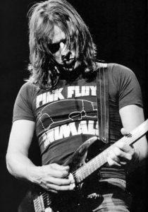 Gilmour (Animals)